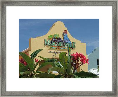 Daydreaming Framed Print by Robert Meanor