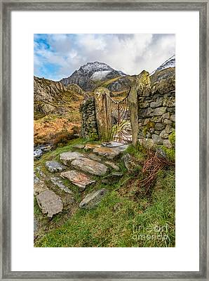 Decorative Iron Gate  Framed Print by Adrian Evans