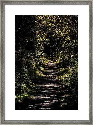 Framed Print featuring the photograph Deep by Odd Jeppesen