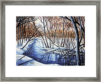 Deep Woods Wisconsin Framed Print