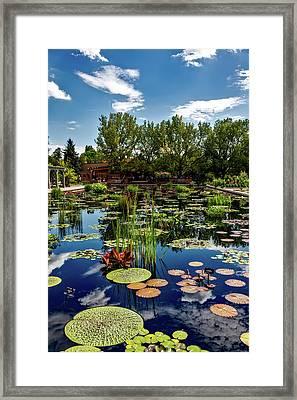 Denver Botanic Gardens Framed Print by Mountain Dreams