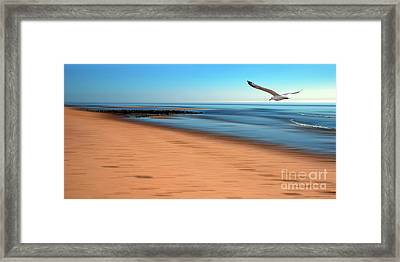 Framed Print featuring the photograph Desire Light  by Hannes Cmarits