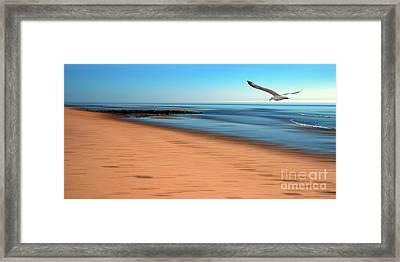 Desire Light  Framed Print