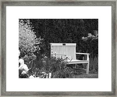 Desolate In The Garden Framed Print