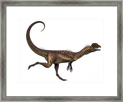 Dilophosaurus Dinosaur Framed Print by Corey Ford