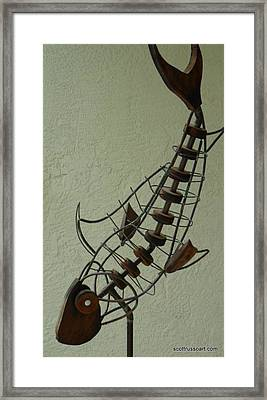 Diving Fish Framed Print by Scott Russo