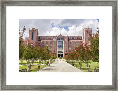 Doak S. Campbell Stadium At Florida State University Framed Print