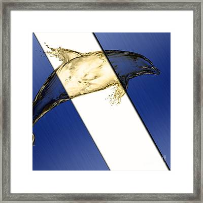 Dolphin Collection Framed Print