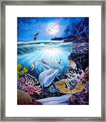 Dolphin Dream Framed Print by Daniel Bergren