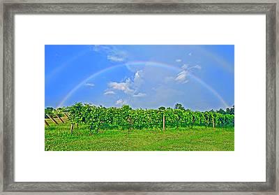 Double Rainbow Vineyard, Smith Mountain Lake Framed Print