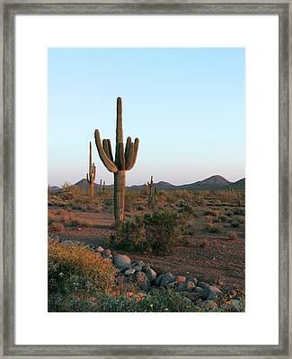 Framed Print featuring the photograph Dove Valley by Gordon Beck