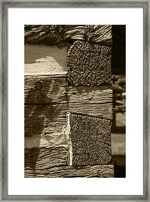 Dovetail Log Structure Framed Print