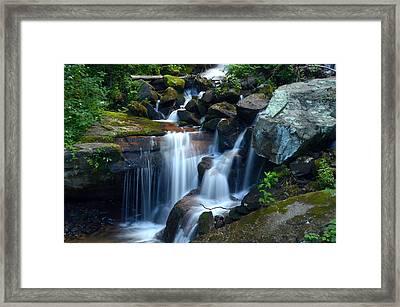 Down Stream Framed Print