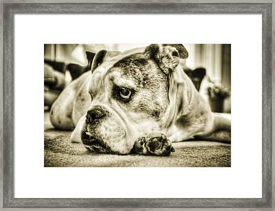 Dozer Framed Print by Andrew Kubica