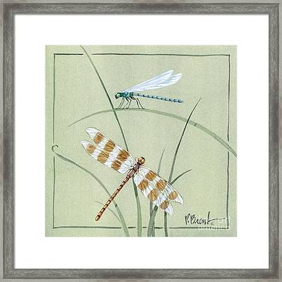 Dragonfly Damselfly Framed Print