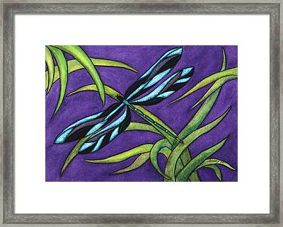 Dragonfly Framed Print by Stephanie  Jolley