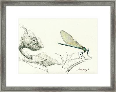 Dragonfly With Chameleon Framed Print by Juan Bosco