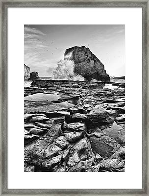 Dramatic View Of Shark Fin Cove Framed Print
