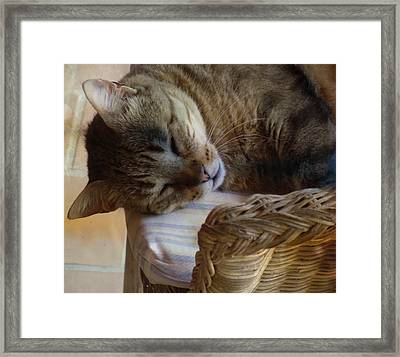 Dream A Little Dream Of Me  Framed Print