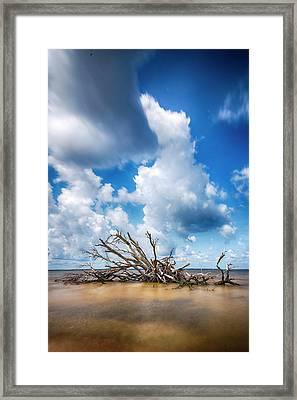 Framed Print featuring the photograph Driftwood Sky by Alan Raasch
