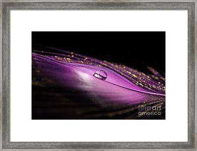 Drop Of Illusion Framed Print by Krissy Katsimbras