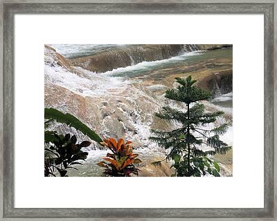 Dunns River Falls Framed Print by Rosalie Scanlon