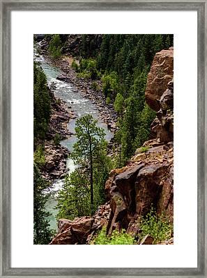 Durango - Silverton Narrow Gauge Railroad - Colorado Framed Print by Jon Berghoff