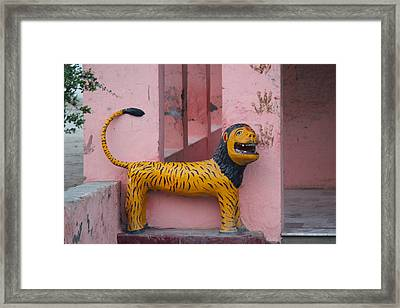 Durga's Lion, Vrindavan Framed Print by Jennifer Mazzucco