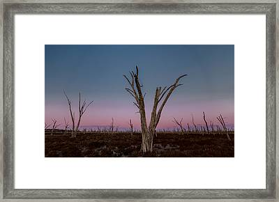 Framed Print featuring the photograph Dusk At Dumbleyung Lake by Julian Cook