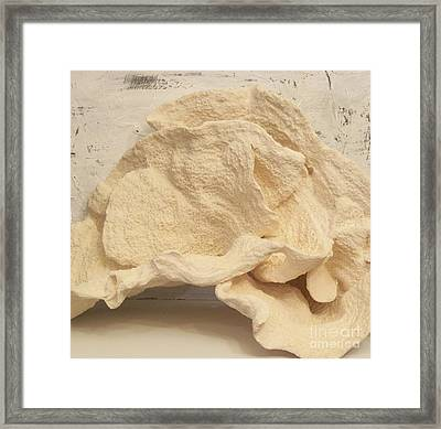Ear Coral Framed Print