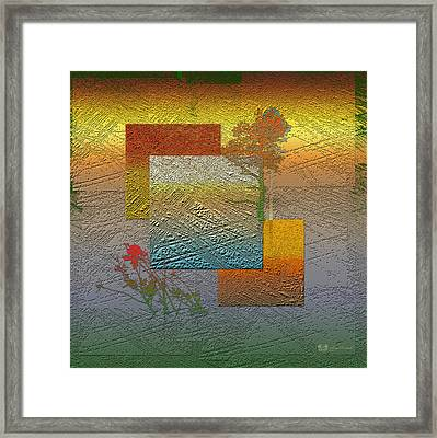 Early Morning In Boreal Forest Framed Print