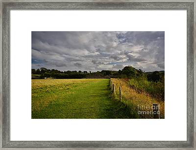 Easby Walks Framed Print