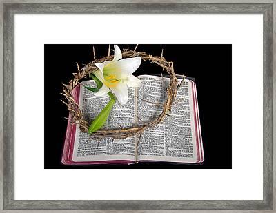 Easter Bible Framed Print