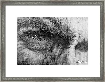 Eastwood Framed Print by Roy Anthony Kaelin