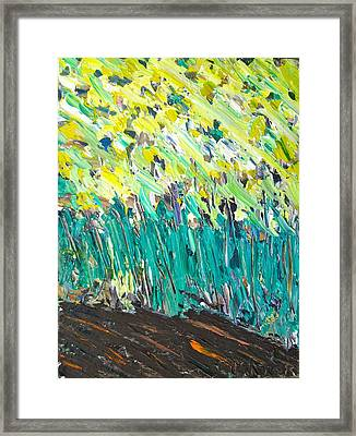 Edge Of The Forest Framed Print