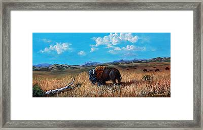 Edge Of The Herd Framed Print by Julie Townsend