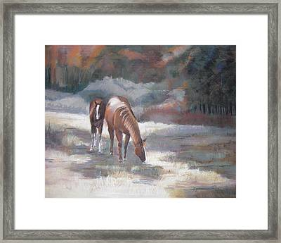 Edge Of The Woods Framed Print by Synnove Pettersen