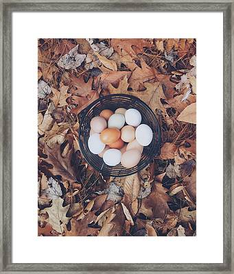 Eggs Framed Print by Happy Home Artistry
