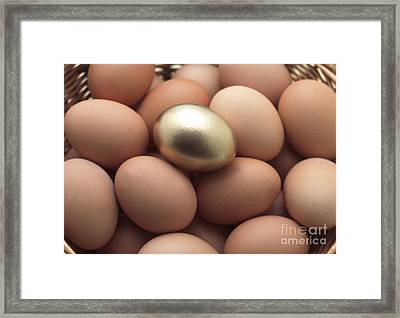 Eggs In Basket With A Golden One Framed Print