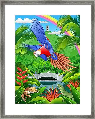 El Yunque Rain Forest  Framed Print