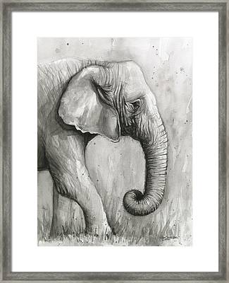 Elephant Watercolor Framed Print by Olga Shvartsur