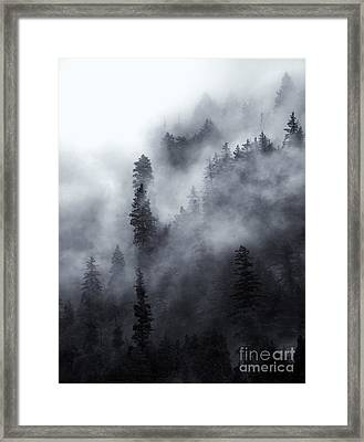 Emerging  Framed Print by Mike Dawson