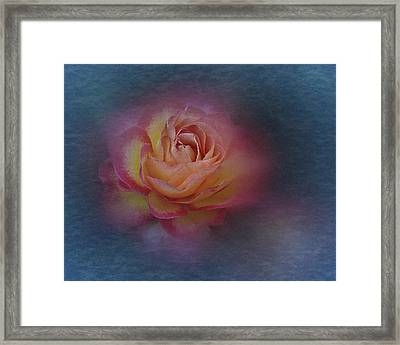 Framed Print featuring the photograph End Of September 2016 Rose by Richard Cummings