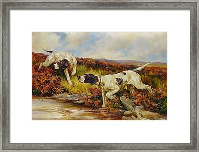English Pointers Framed Print by Lucia Amitra