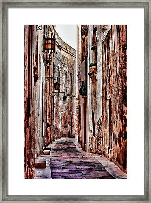 Framed Print featuring the photograph Etched In Stone by Tom Prendergast