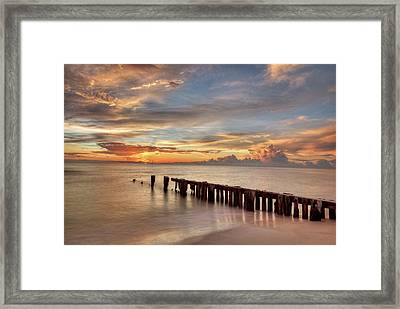 Evening Delight Framed Print by Nick  Shirghio