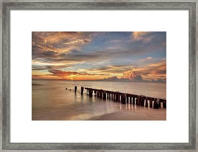 Evening Delight Framed Print