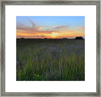 Framed Print featuring the photograph Everglades Sunset by Stephen  Vecchiotti