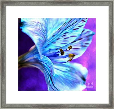 Every Waking Moment Framed Print