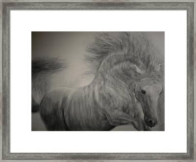 Exuberant Framed Print by Adrienne Martino